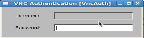 vns server
